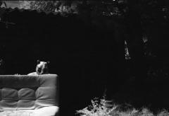 Domestic Panda: Infrared.