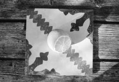 Fruit Tiles: Lemon. Camera: Nikon F100. Film: Kodak Tri-X 400 @ 400, Rodinal.