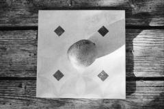 Fruit Tiles: Kiwi. Camera: Nikon F100. Film: Kodak Tri-X 400 @ 400, Rodinal.
