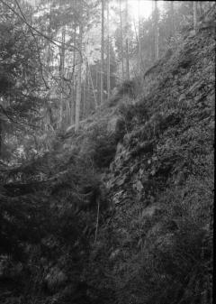 In Hell: The Black Lodge. Camera: Zorki 1. Film: Kodak Tri-X. Twin Peaks Mystery Topic.